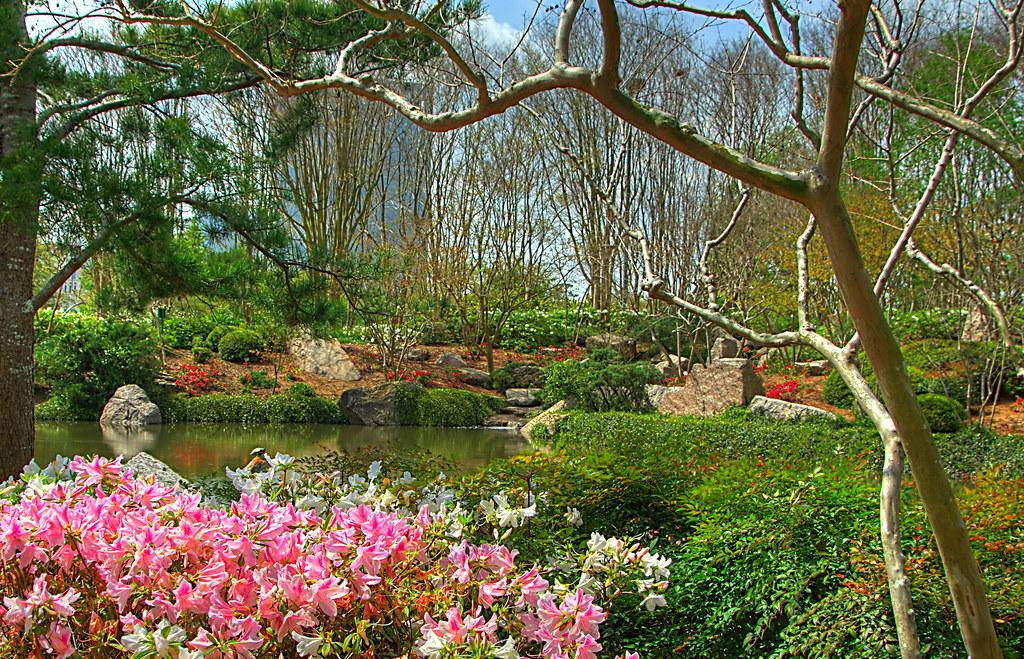 Hermann Park Japanese Gardens Hdr Hermann Park In Housto Flickr