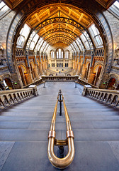 Natural History Museum | by Philipp Klinger Photography