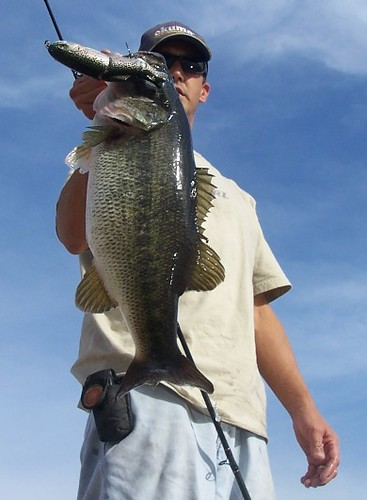 Swimbait lake perris wacked a nice one on a 3 16 for Lake perris fishing report