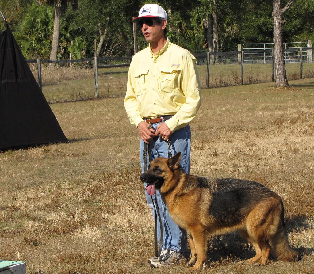 Dog Training Mobile Al