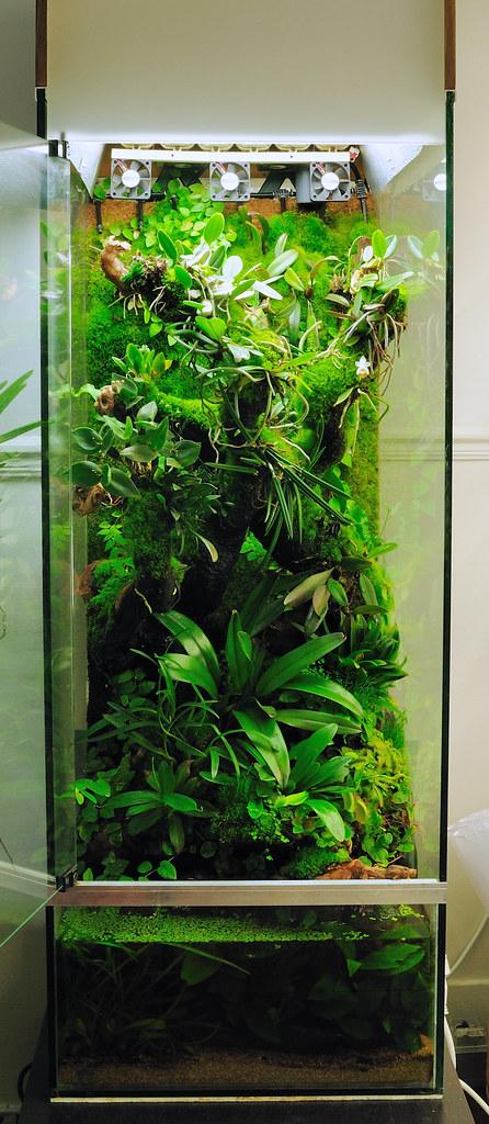 Orchidarium 03 05 2010 e marion flickr for Mur vegetal aquarium
