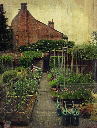 the vegetable garden | by The hills are alive*