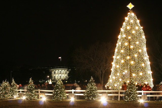 the 2008 national christmas tree washington dc by mikelynaugh - Christmas In Washington Dc