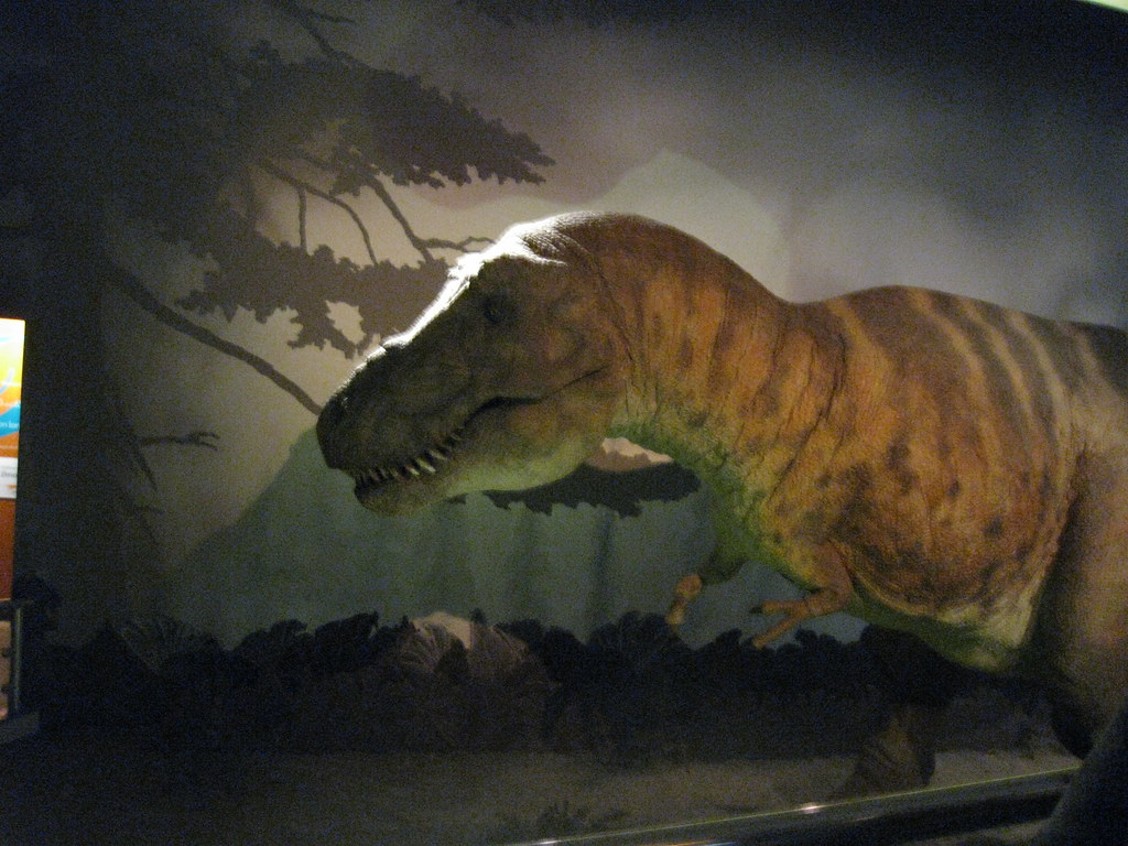 T Rex Natural History Museum London