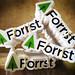 Forrst