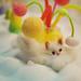 pip & pop fluffy cat