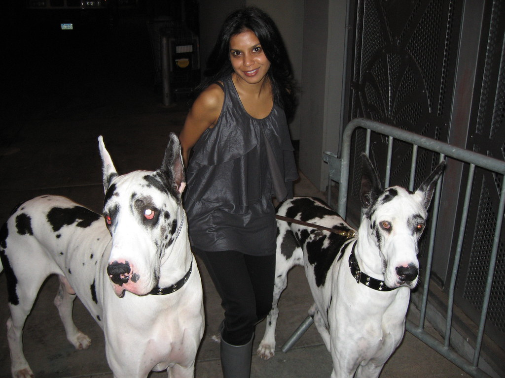 Hitha With Lady Gagas Dogs  I Got The Huge Honor Of -9119
