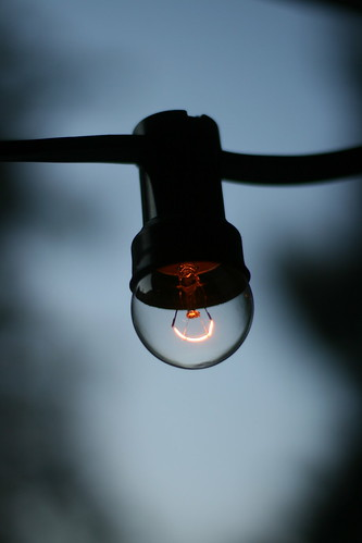 Dim light bulb | by wheany