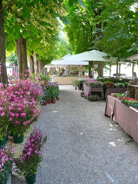 Jardins jardin aux tuileries flickr photo sharing for Jardin jardin aux tuileries