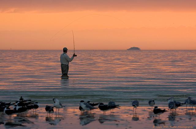 Fishing off bunche beach ft myers fl fishing off for Fort myers beach fishing