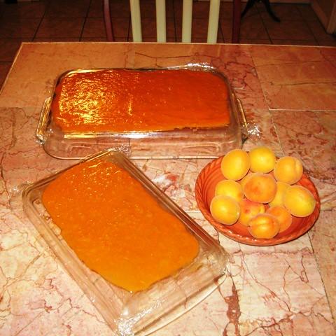 Apricot Fruit Roll Ups, (Fruit Leather), Las Vegas, NV ...