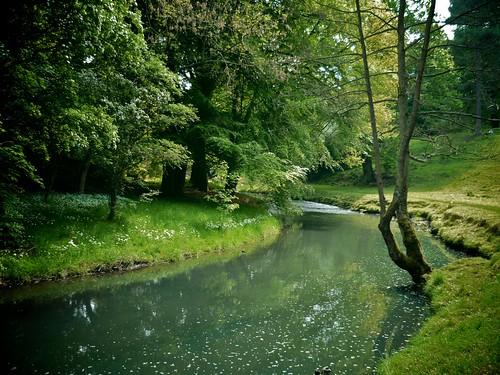The calm river 3624239201_df09a6769f