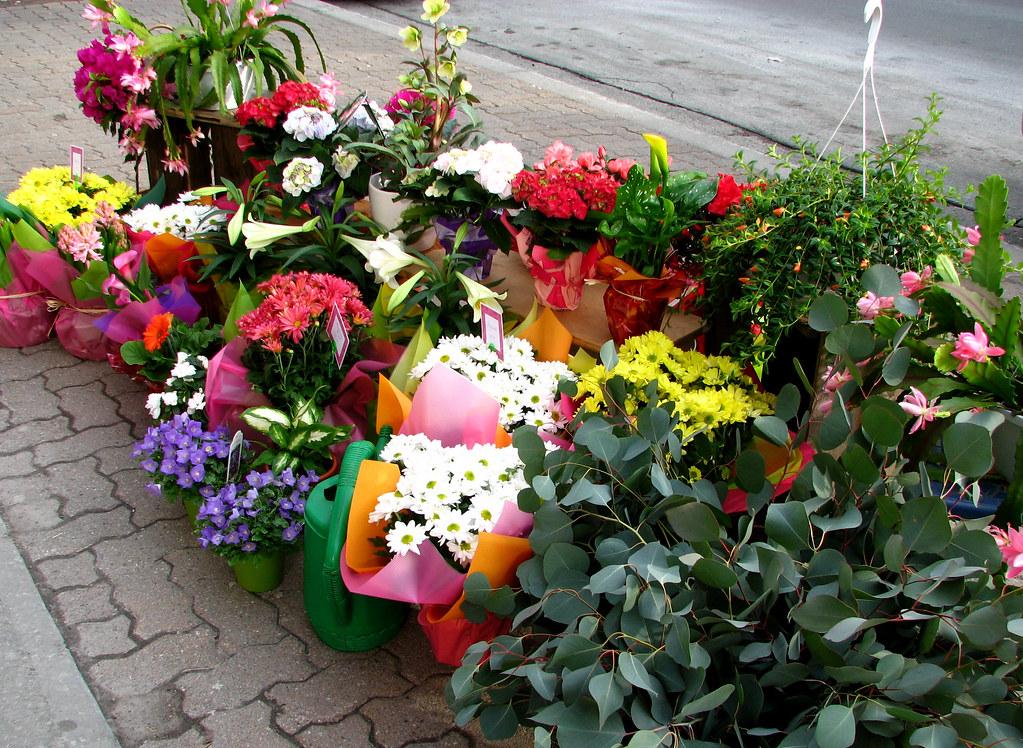pots des fleurs pour gayer la maison flowers pots to. Black Bedroom Furniture Sets. Home Design Ideas