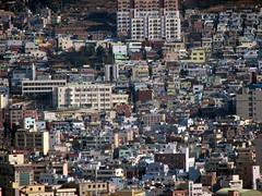 부산 산책 2006.12.30, 영도 주택가 Busan walk
