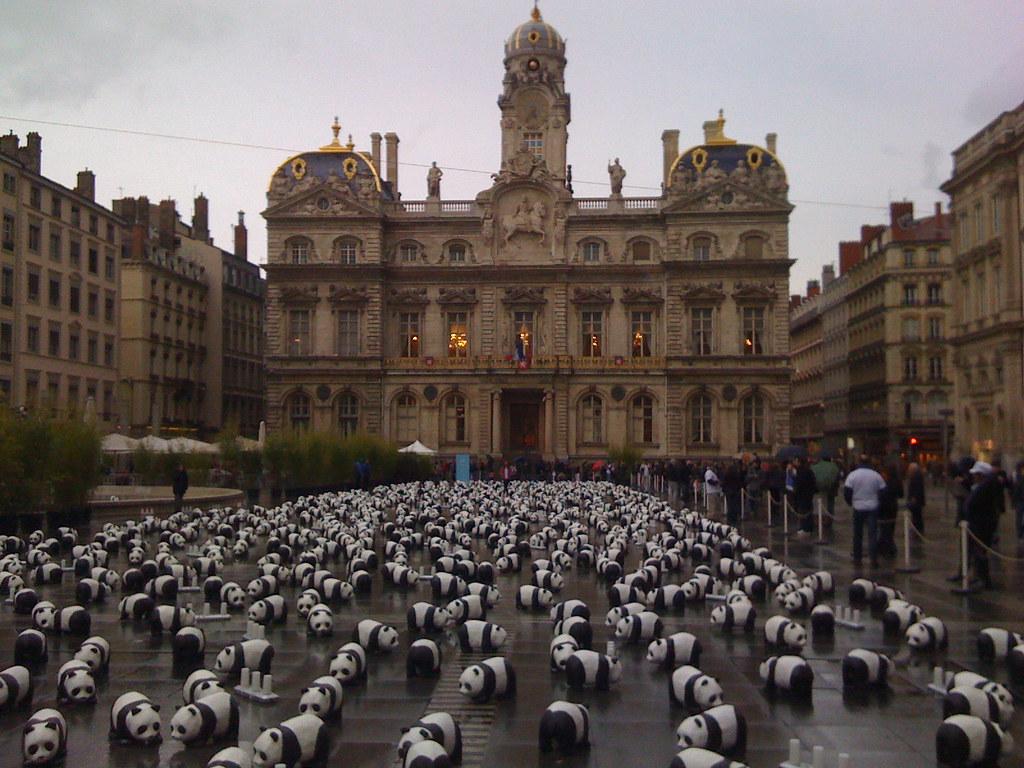 savez vous qu 39 il ne reste que 1600 pandas dans le monde flickr. Black Bedroom Furniture Sets. Home Design Ideas