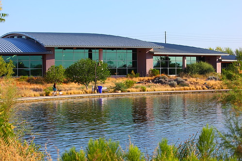 Garden pool southeast regional library in gilbert for Garden pool meetup