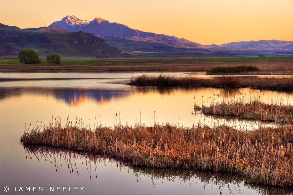 Cutler marsh soft morning light streams across the for West motor logan utah
