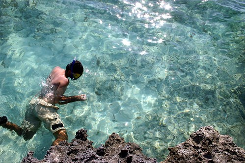 Snorkeling in the Bahamas - Paradise Island | by Erico M.