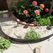 backyard garden planter progression