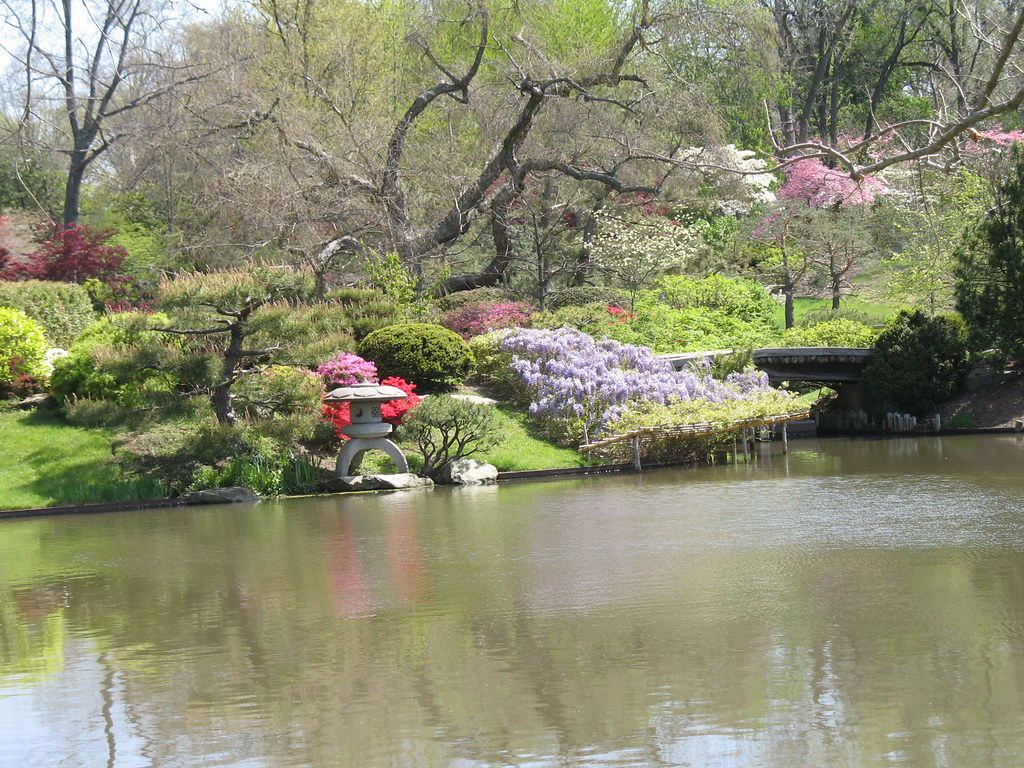 Japanese Garden Azaleas Chinese Wisteria And Dogwoods Rho Flickr