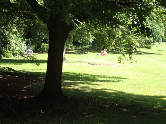 Men sunbathing naked in the public park in the Berlin city