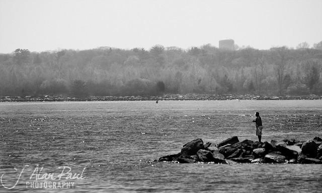 Fishing long island sound saw this guy out on the rock for Long island sound fishing report
