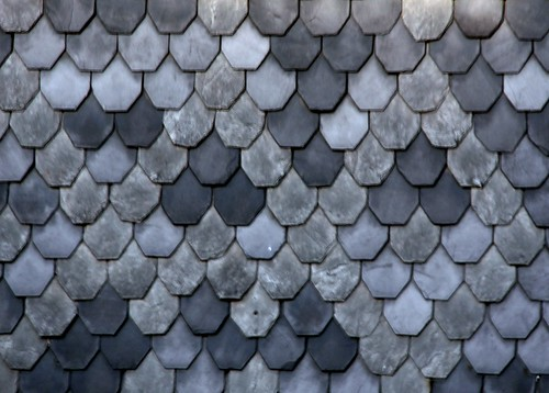 Blue Fish Scale Pattern Flickr Photo Sharing