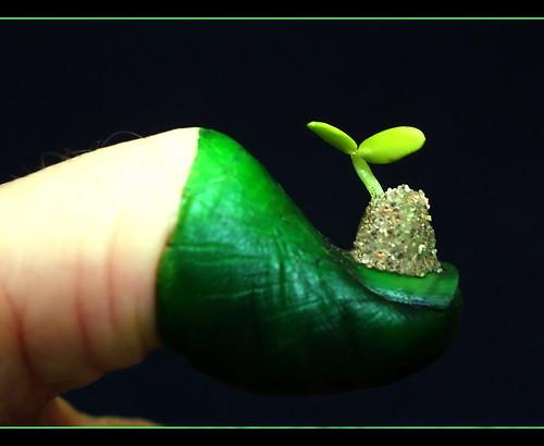 green thumb employment