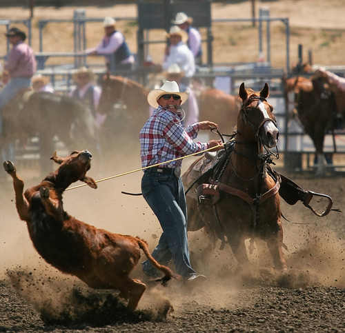 Calf Roping Horse Calf Roping | by Midmarkwest