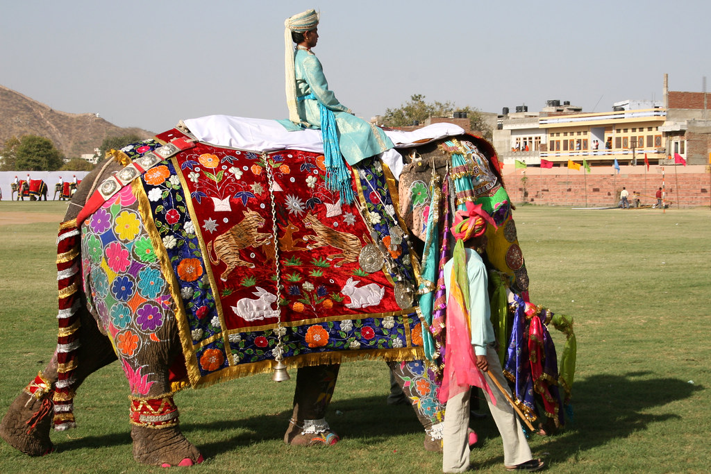 Elephant Festival Jaipur 4 | This was a fabulous event ...