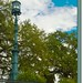 Savannah Harbor Light
