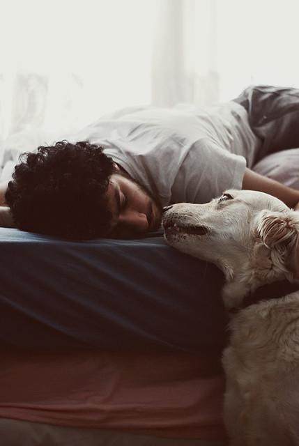 golden uwielbia jak śpisz