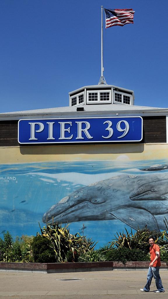 Aquarium Of The Bay On Pier 39 Manohard Flickr