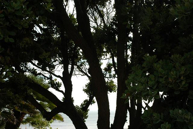 Meditation Garden Self Realization Fellowship Encinitas California Usa3430 Flickr Photo