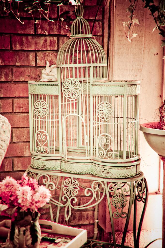 birdcage stevie benintende flickr. Black Bedroom Furniture Sets. Home Design Ideas