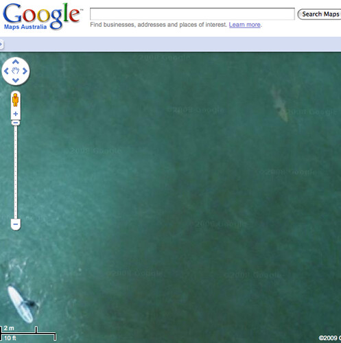 Shark Spotted On Google Maps At Manly Beach Sydney Flickr