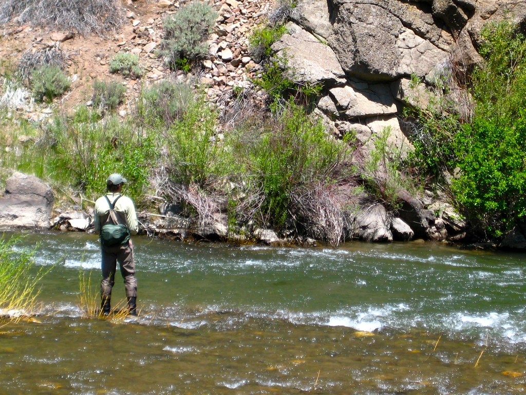 East carson river 66 fly fishing trip on the east fork for East fork lake fishing report
