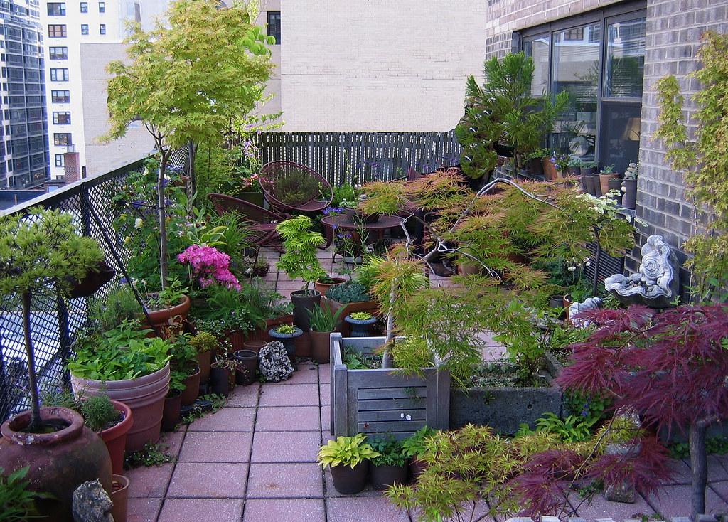 Terrace garden in new york city bearsky flickr for Terrace 33 city garden