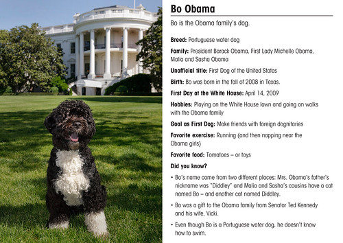 BO.CARD | by The White House