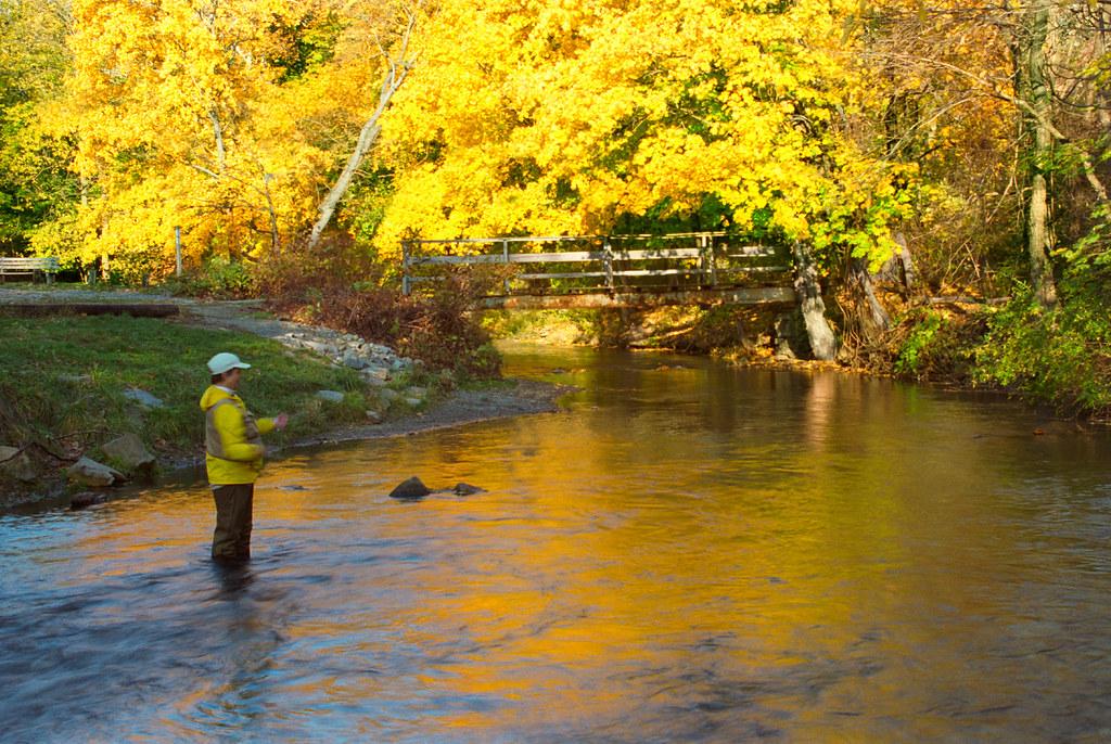 yellow breeches fishing report