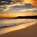 Putty Beach Sunset
