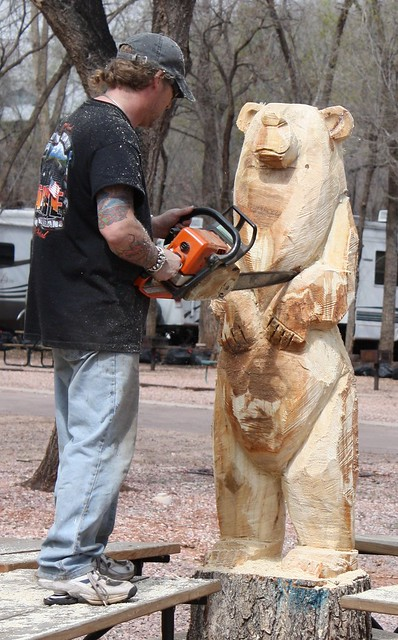 Chainsaw tree stump carving bear garden of the gods ca
