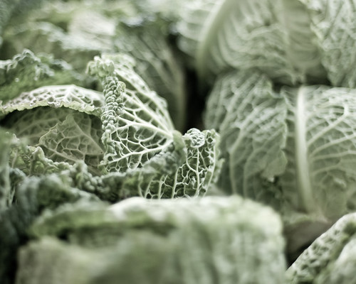 Cabbages, Santa Rosa Farmers Market | by jen_maiser