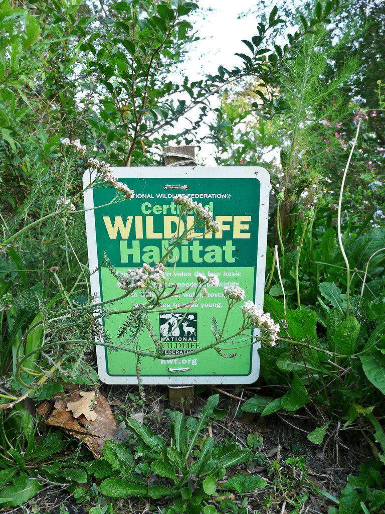 Certified Wildlife Habitat National Wildlife Federation