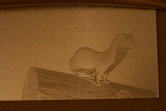 Laser Engraved: On the lookout...