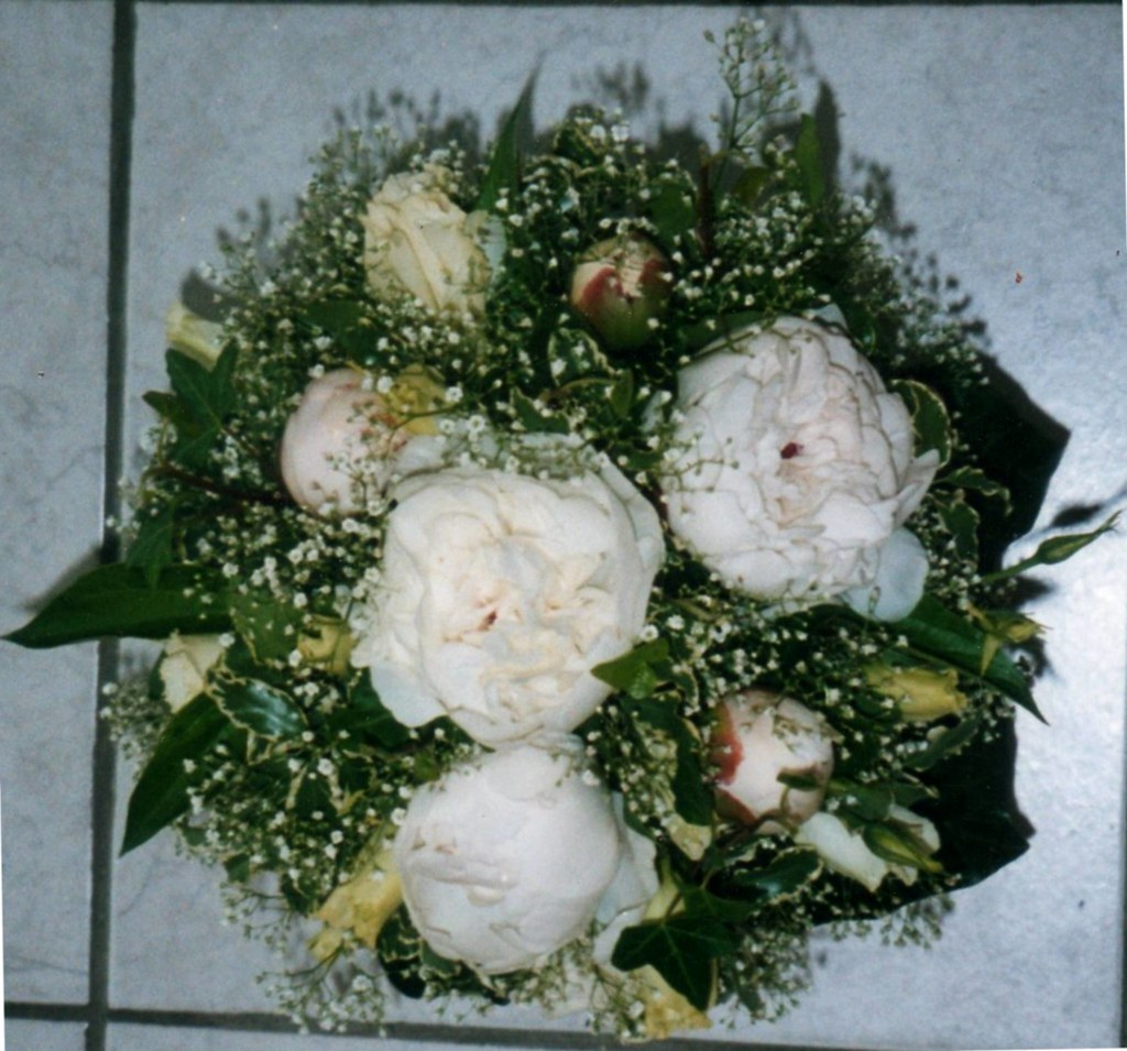 Boutique de fleurs amaryllis fleurs splendide bouquet for Fleurs amaryllis bouquet