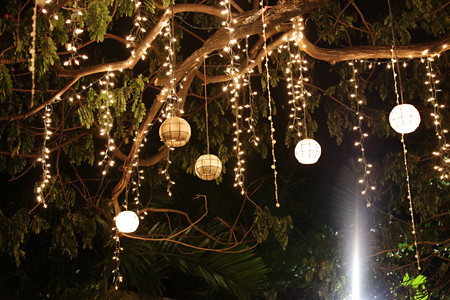 Capiz lanterns hanging on the tree ccapco flickr for How to hang string lights without trees
