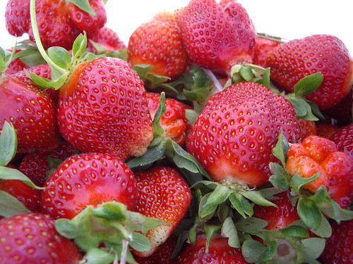 Fresh Picked Strawberries from Hann Farms | by swampkitty