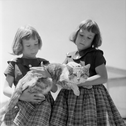 Douglas Jones: farm girls with cat, Iowa, 1958 | by trialsanderrors