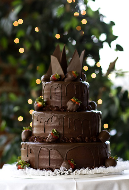 Elegant Simple Chocolate Cake Decorated